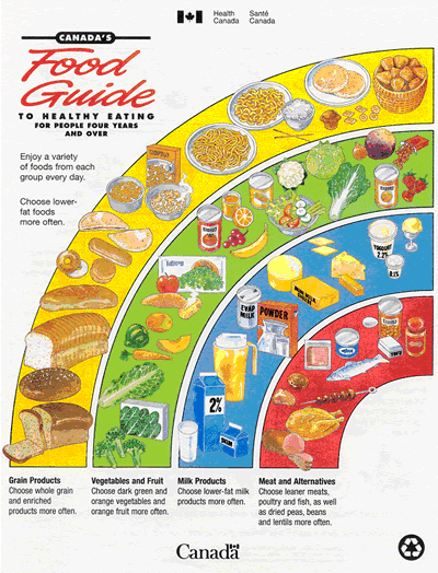 Does Canada S Food Guide Promote Obesity
