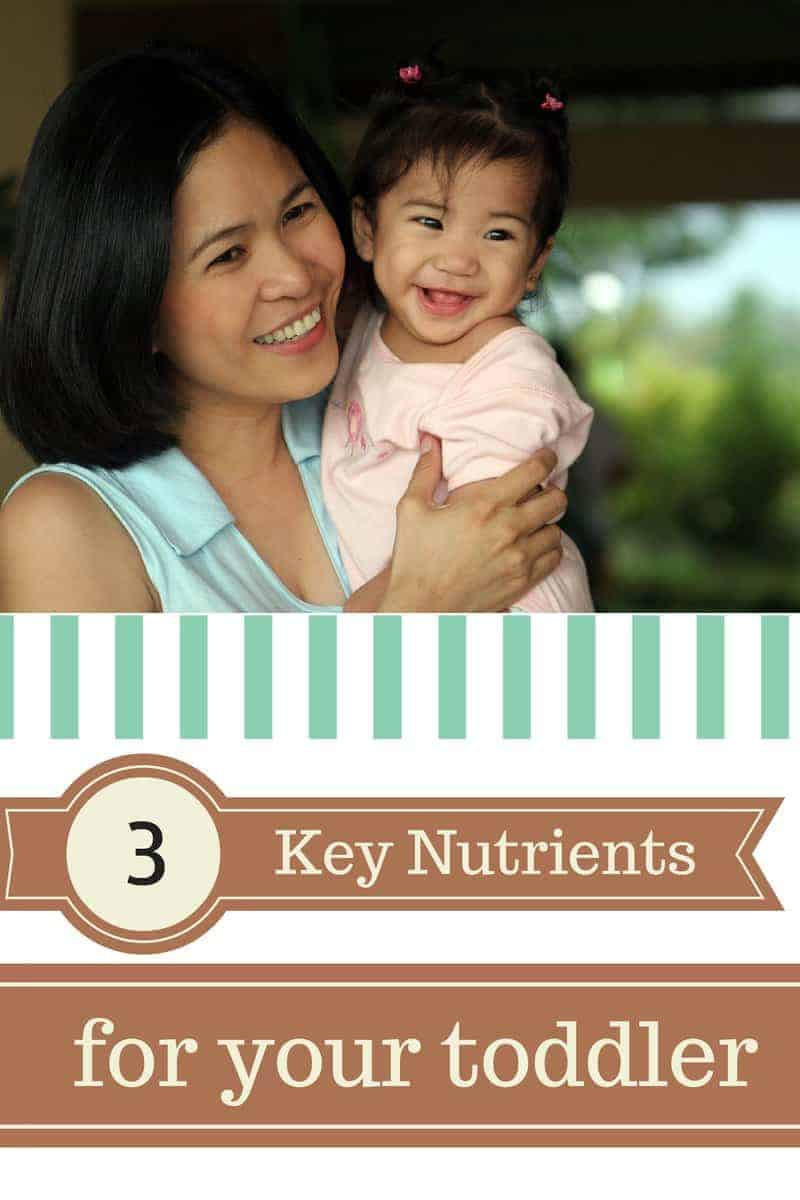 Key Nutrients for your Toddler