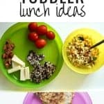 12 Toddler Lunch Ideas