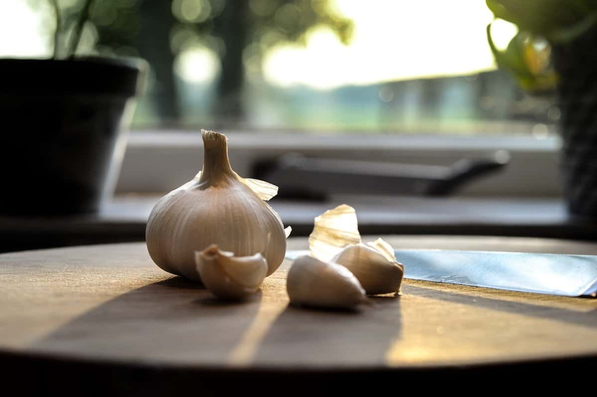 Onions and garlic are part of the Mediterranean Diet