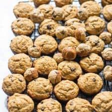 Big Batch Protein Muffins